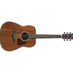 AW54OPN  Ibanez Acoustic Guitar - Open Pore Natural